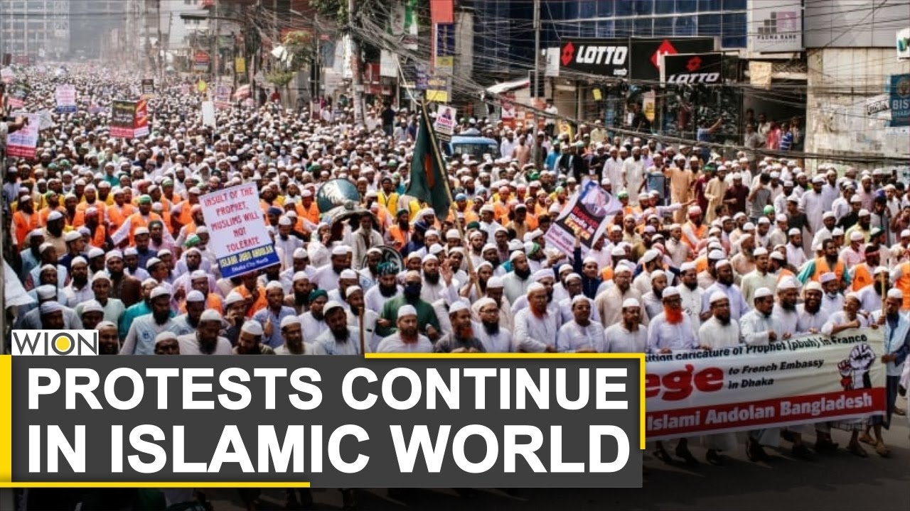 Protests continue in Islamic world against France over cartoon row | World News | WION News
