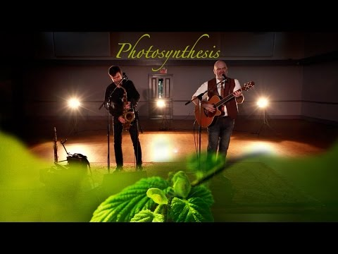 "David Leask performs ""Photosynthesis"""