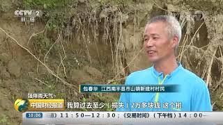 [中国财经报道]强降雨天气 江西南丰:强降雨致蜜桔受灾 预计损失4亿元| CCTV财经