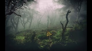 S.T.A.L.K.E.R.- Call of Chernobyl - Легенды Зоны