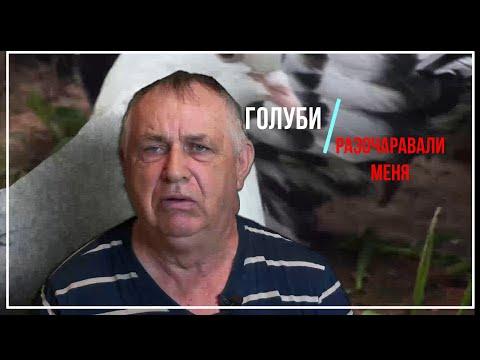 Голуби Геннадий Мацинов(Голуби Разочаровали Меня) Станица Кагальницкая!