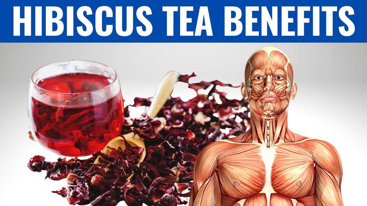 Download HIBISCUS TEA BENEFITS - 14 Impressive Health Benefits of Hibiscus Tea!