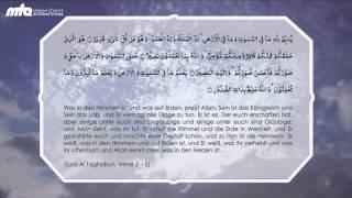 Quran - Sura Al Taghabun Verse 2 bis 5