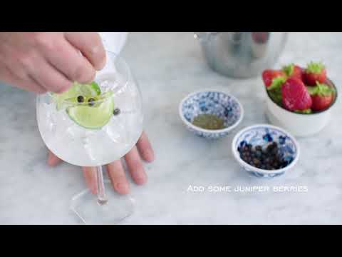 Martin Miller's Gin Lime G&T Perfect Serve