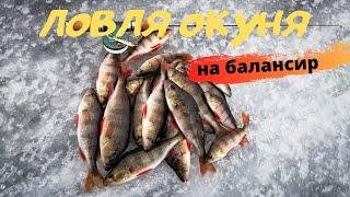 Первый лёд 2020-2021 | Рыбалка на балансир | Ловля окуня на балансир