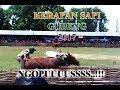 Download Kerapan Sapi Gubeng 2017# Ngopuuussss