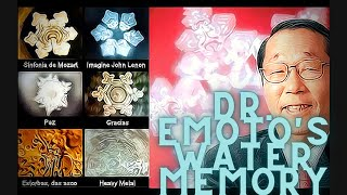 REALITY DECODED EP 2 | 3RD EYE & WATER MEMORY EXPLAINED! #water #god #3rdeye #pineal