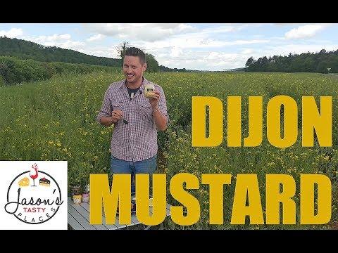 E09: Oh, Maille! Mustard in Dijon | Dijon, France