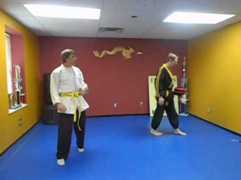 Kenpo for beginners lesson 7 (free karate)
