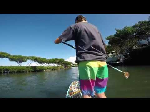 Florida SUP - Bote Flood Bugslinger board