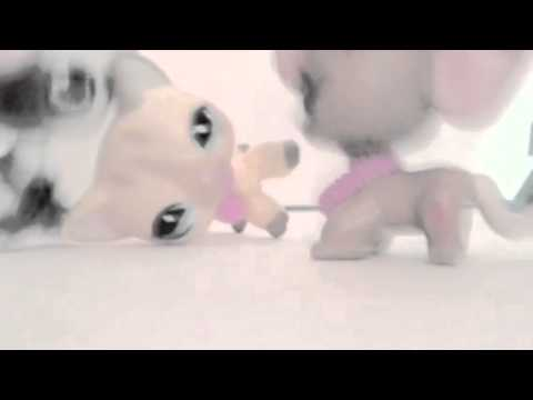 LPS: Music Video: When She Crys | STOP BULLYING