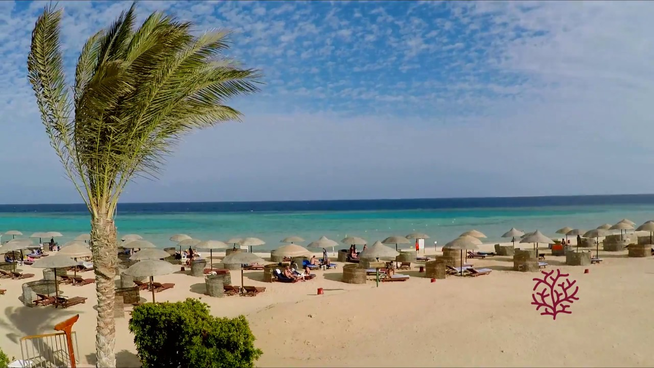 Gorgonia Beach Resort Wadi El Gemal 1 Minute