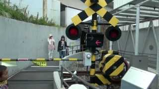 Playing in the railway crossing (Japanese Train) thumbnail