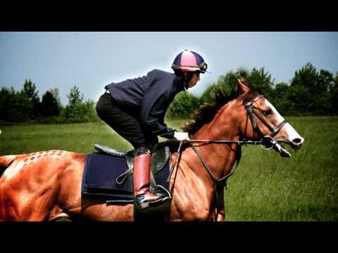 The British Racing School Jockey Training - World Class (SOUND NEEDED)