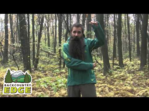 Youtube Outdoor Skyclimb Terrex Jacket Adidas qPwO7nAA