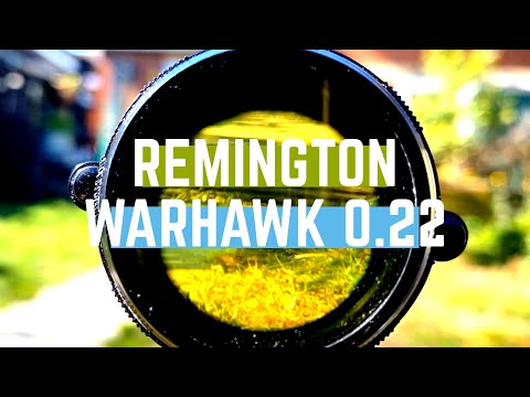 0.22 Remington Warhawk Air Rifle Review & Unboxing