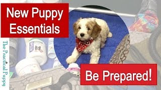 Preparing for Your New Puppy — Essentials and Other Recommended Products