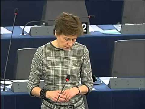 Anneli Jäätteenmäki [FR] on EU-Iraq partnership and cooperation agreement