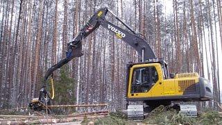 Харвестер в работе - вид Из кабины(Давно заинтересовало меня ,чем же теперь рубят лес! Находился неподалёку от одной делянки, мне удалось попа..., 2015-04-07T20:42:02.000Z)
