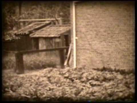 Compilatie dorpsfilm Borssele uit 1956