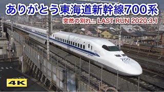 ありがとう700系 ラストラン装飾 団体専用列車 C53&C54編成 in 京都 2020.3.1【4K】