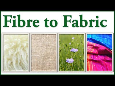 Fibres to Fabrics - Introduction - Fibres to fabrics (class 6) - Fibre to Fabric (6th Grade Science)