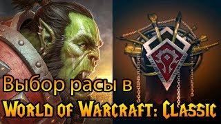 Выбор расы в World of Warcraft: Classic (#1)
