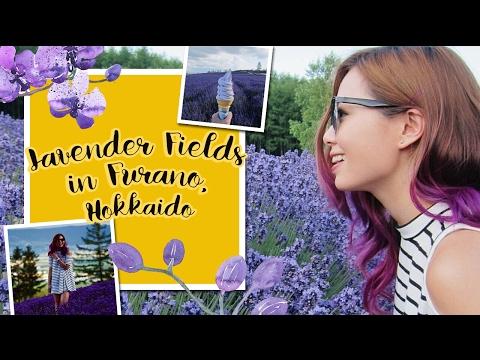 Lavender Fields in Furano, Hokkaido | Kye Sees