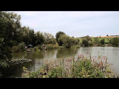 VIADUCT FISHERY, SOMERTON, SOMERSET