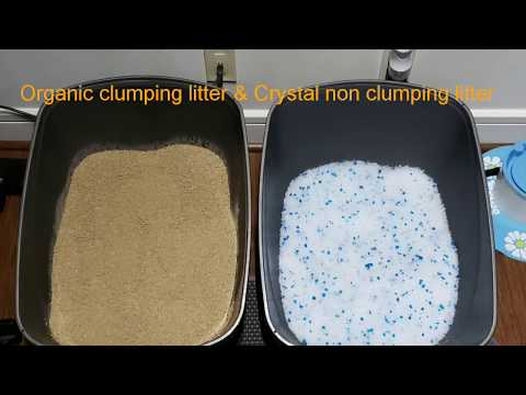 Changing The Cat Litter To An Organic Clumping Litter And Crystal Non Clumping Litter