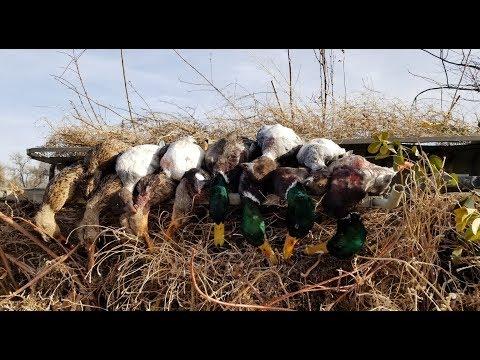 Crushing Ducks On The Snake River!