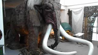 12. Гиганты Ледникового периода - Мамонт