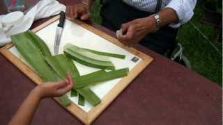 How to make Aloe Vera gel?
