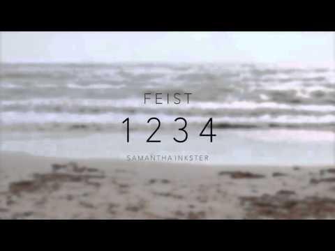 1234 - Feist (COVER)