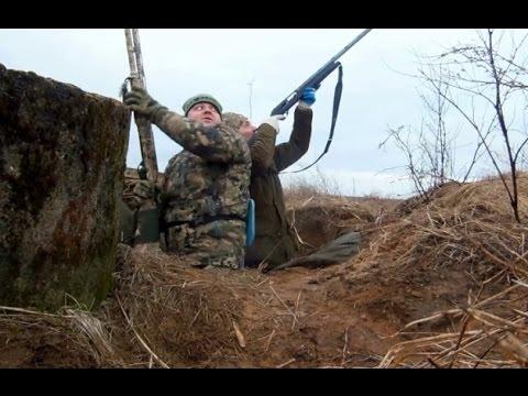 Весенняя охота на гусей в Калмыкии