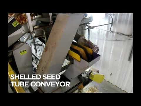 Seed Corn Production Video