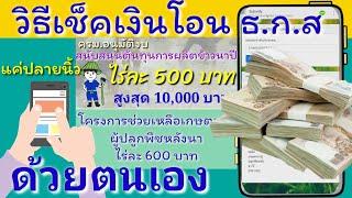 วิธี ตรวจสอบสิทธิ์ และ เงินโอนเข้าบัญชี ธ.ก.ส ไร่ละ 500 บาท ไม่เกิน 20 ไร่ และ ไร่ละ 600 บาท