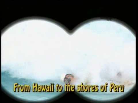 Surfin' Safari (Mickey's Fun Songs)