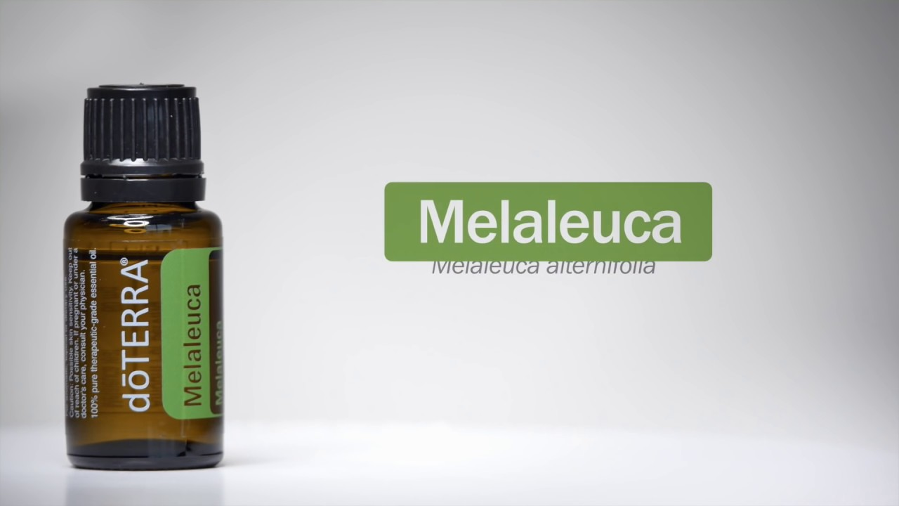 doTERRA® Melaleuca (Tea Tree) Oil Uses and Benefits
