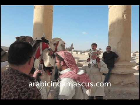 Palmyra, Syria: A weekend break from studying Arabic in Damascus