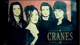 CRANES - live in vancouver (2002) [Audio Full Album]