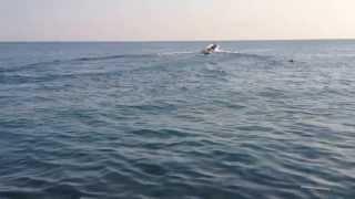 Дагомыс 2013 июль(, 2013-07-04T04:33:07.000Z)