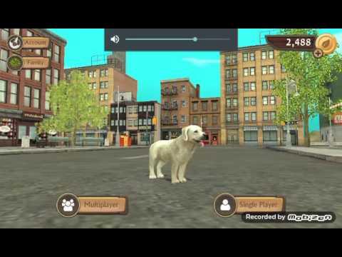 Dog sim : finding a mate 😘