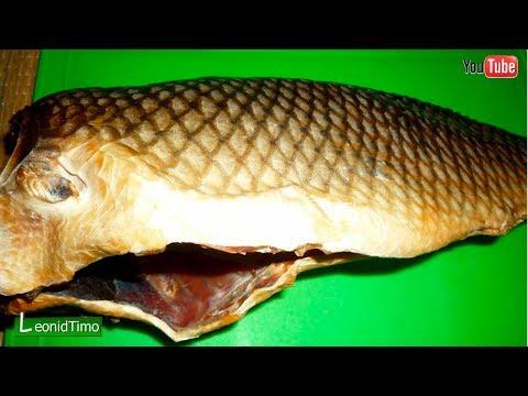 рыба толстолобик видео
