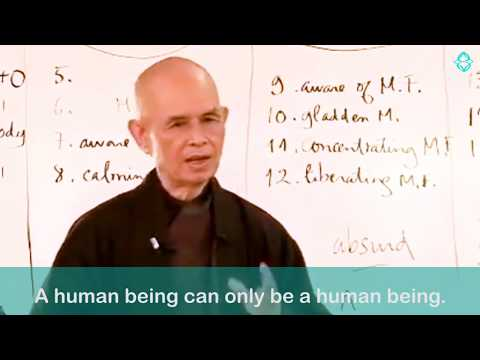 The Zen of Science - Consciousness & Quantum Physics
