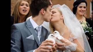 Ведущий на свадьбу | Тамада на юбилей в Могилеве | Терещенко Владимир