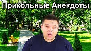 Анекдот про хитрого кота Прикольные и самые смешные анекдоты от Лёвы