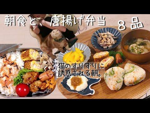 【料理動画♯37】誘惑猫とワンプレート朝食とから揚げ弁当【English sub】【obento】【猫動画】