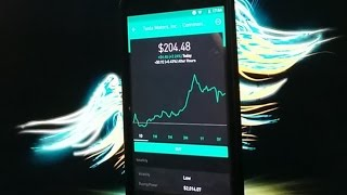 Robinhood APP - Good time to invest in Elon Musk and Tesla?
