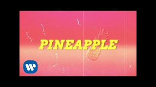 ty dolla ign pineapple feat gucci mane quavo lyric video